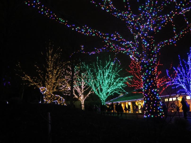 zoolights-december-5